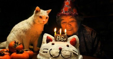 Baka Misao i mačka Fukumaru