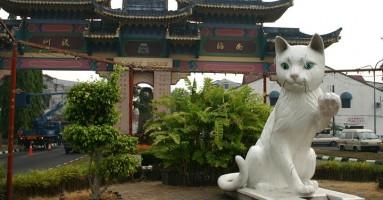 Muzej mačaka - atrakcija malezijskog grada